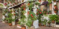 Festival of Patios in Córdoba: Andalucía in full bloom